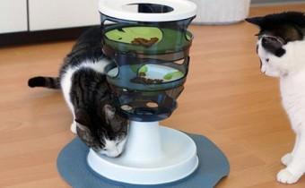Activity Katzenspielzeug