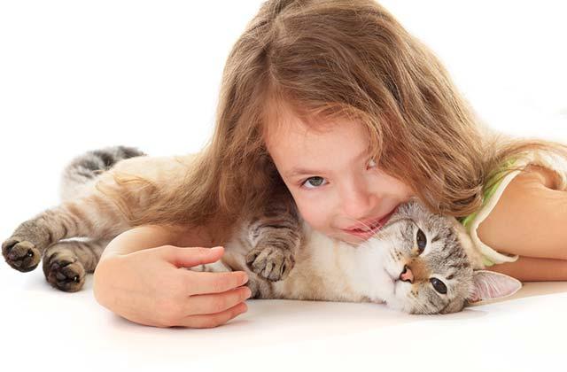 Hygienefragen beim Umgang von Kindern mit Katzen