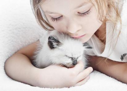 Katzen lieben das Schmusen mit Menschen