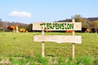 tierpension